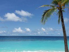 「ジンベイザメと泳ぎたい!」モルディブ ミリヒアイランドリゾート滞在記+ちょっこっとバンコク編 2