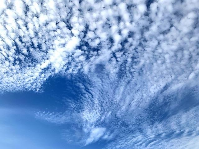 2020年5月14日に神奈川県は非常事態宣言が解除されることなく様子を見る体制に。自粛です。<br />今朝の空は見事でした。空を見上げながらウォーキング。鱗雲の流れを追いました。<br />刻々と変化する雲を眺めるのも時間を楽しんでいる事を感じます。<br />   青空と雲遊び