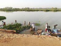 弾丸ニジェール1912  「西アフリカの内陸国でニジェール川を見る。」  ~ニアメ~