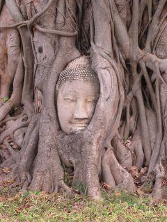 タイ4大王朝縦断の旅③ 400年の歴史「アユタヤ遺跡公園」を巡る