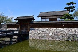 長野県:上田藩主居館、上田城、龍岡城、小諸城、松代城、真田邸、横山城(その3)