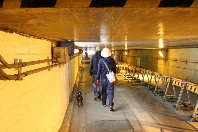 品川駅から田町駅の間は距離が長いとして、今年3月、高輪ゲートウェイが開業しました。品川駅から田町駅の間には多くの線路があります。しかし、その線路網に対して西側の高輪地区と東側の芝浦地区を行き来できる道路は実はたった2つしかありません。<br /><br />開業したばかりの高輪ゲートウェイ駅も改札は西口一ヶ所で東口には出られません。東西連絡道路のひとつは田町駅近くにある札ノ辻陸橋、そしてもうひとつは泉岳寺近くの「高輪橋架道橋」という幅員が狭く天井高の低い歴史的な地下区道です。何となく新型コロナの暗いトンネルと被るような気が…<br /><br />今後の再開発計画を踏まえて、区道は今年4月12日より車両通行できなくなりました。歩行者と自転車の押し歩きは通行可能で区民にとっては大事な道です。歴史を記憶に留めておきたく訪問。将来的には高輪ゲートウェイ駅から東口への連絡路ができる計画ですが、完成まで十数年かかる予定です。なにせ、日本の鉄道大動脈がそのすぐ上を通っていますので。<br />