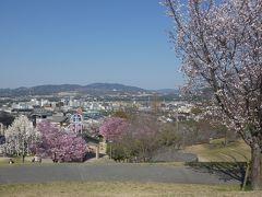 京田辺 田辺公園(Tanabe Park, Kyotanabe, Kyoto, JP)