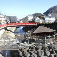 世界遺産と温泉巡り(5)最終日は修善寺温泉を散策し高速バスで帰京
