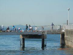 豊浜釣り桟橋