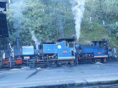 ダージリンひとり旅(1)世界最古の山岳鉄道・トイ・トレイン見学