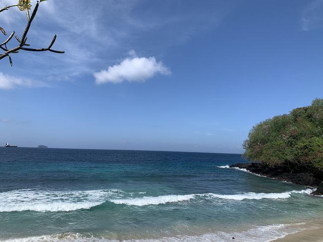 魚、釣れました!<br />ブルーラグーンビーチ。<br />コロナの今も、普通に入れました。<br />ビーチにあるワルンなどのお店はお休みでしたが、外国人の方も数人来ていて、泳いでる遊んでらっしゃいました。<br />今は気持ちいい~、強めの風が吹く季節なので、波は高かったです。<br />でも海の色は青く、透明度も高く、綺麗です!<br />夜ご飯はイカンゴレン(魚フライ)<br />たくさん身がついていて、美味しかったです。<br />魚釣り、楽しいー!