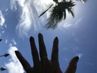 ハワイ 娘と二人 マウイ島からオアフ島への旅 ⑨