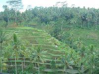 2009年バリ島5日間