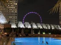 シンガポール2020.1
