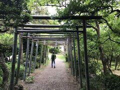 コロナウィルスで旅行に行けないので近辺の武蔵野観音霊場No33竹寺を周った2/2