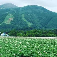 【北海道2019】札幌に3年住んだ経験のある私がコーディネートする3泊4日の札幌&ニセコ旅。
