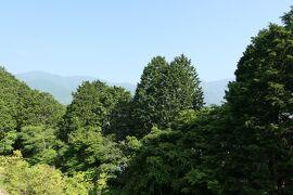 初夏の箱根♪ Vol.9 ☆レジーナリゾート箱根仙石原:テラスから朝の美しい風景♪