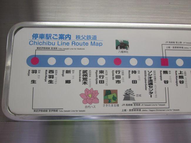 行田市で、忍城とさきたま古墳、そして古代蓮を巡ってきました。<br />昔、映画「のぼうの城」を観て忍城を見たくなり、行こうと調べたら、JR行田駅から遠い。そのまま放置していたのですが、秩父鉄道の行田市駅からならば、近い。東武伊勢崎線の羽生駅から乗り換えできるし、ついでに古墳見学、古代蓮の観賞と芋づる式に計画しました。