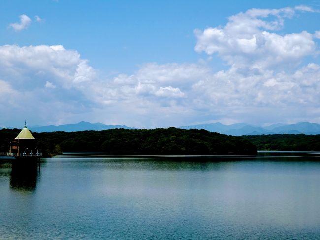 私が武蔵野三十三観音の32番子ノ権現と33番竹寺がハイキングを兼ねて<br />友人と回った頃に<br />https://4travel.jp/travelogue/11611188<br />秩父を歩き遍路で回られたぶりてつさんが<br />今度は武蔵野三十三観音を巡礼されていると知りました。<br />https://4travel.jp/travelogue/11595598<br /><br />ちょうど武蔵三十三観音は4月1日から総開帳とのこと。<br />だったら私も!と思ったのに、コロナウイルスの関係で<br />御開帳はなくなり御朱印も受け付けなくなってしまいました。<br />(この旅行記を書いている6月には御開帳と御朱印は再開しています。)<br />国も自粛ムードでウロウロしている場合じゃない?という雰囲気で<br />なかなか回る気にもならない。<br /><br />だったら、武蔵野三十三観音とダブお寺もある狭山三十三観音を回ろうかな?<br />以前から気になっていた狭山三十三観音。<br />こちらは小さいお寺が多くほとんどが書置きでしかも無住寺院もあるので<br />個人のお宅で御朱印を頂かなくてはならなかったりということで<br />お寺を回るだけで御朱印は頂かないことにしようと思います。<br />