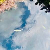2020年6月 温泉旅再開 第2弾!in ふふ河口湖