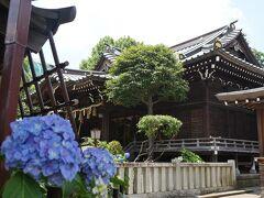 """東京・復縁の神さま""""白山神社のあじさい2020""""を訪れて"""