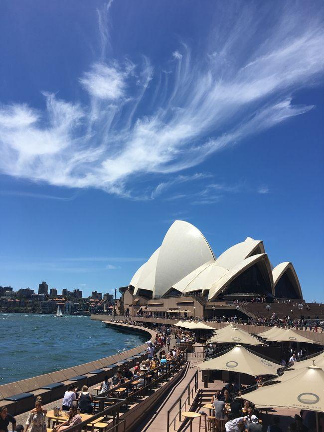 寒い日本を脱出し、夏真っ只中のオーストラリアに夫婦で行ってきました。<br />シドニー2泊→ケアンズ4泊のロング旅行ですが、あまり予定を詰め込みすぎずに美味しいものを食べてゆっくりのんびりと過ごす旅。(帰国したら2キロ太っていましたw)<br />