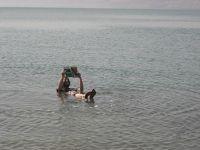 世界一周の思い出 ヨルダン②ヒッチハイクで死海に浮かぶ