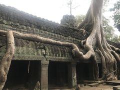 雨の中のタプローム寺院