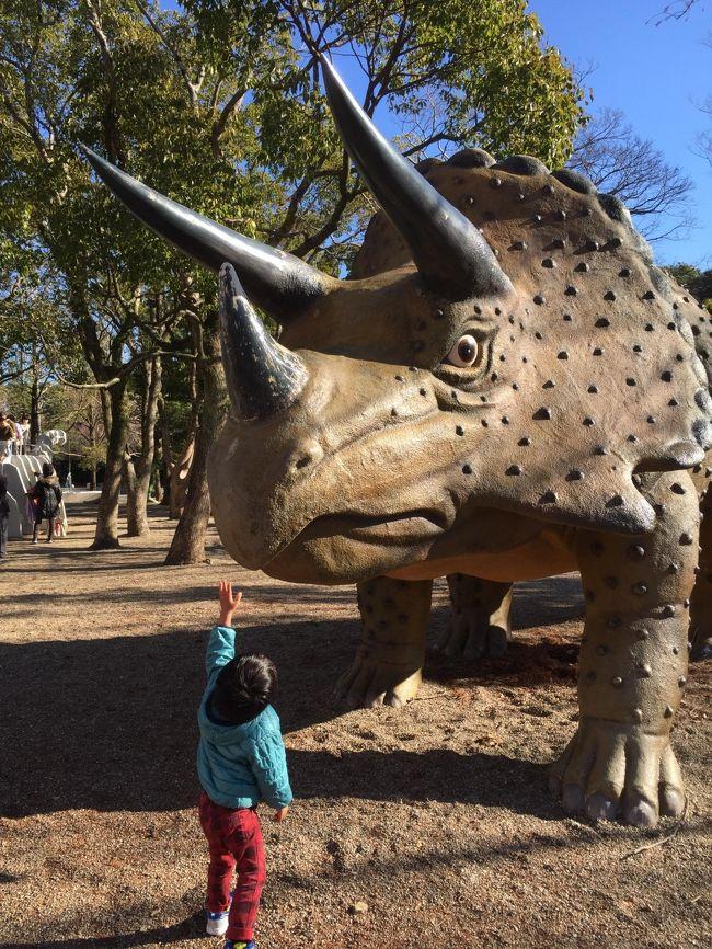 久しぶりに孫達と一泊旅行に行くことにしました<br />海の生き物、動物、恐竜が大好きな孫を豊橋総合動植物公園(のんほいパーク)に連れてってあげたいなと以前から思ってたんです<br />そして宿泊は休暇村伊良湖<br />年末年始はホテル、旅館などはどこもハイシーズンの料金になりますよね<br />でも、休暇村ってそんなに値上がりしないんですよ<br /><br />翌日は思いつきで蔵王山展望台へ<br />無料で楽しめる穴場スポット発見<br />孫達は大喜びでした<br />