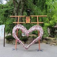 熱海伊豆山神社 参道は急です。