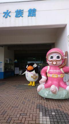 小樽にも春。水族館も再開です。