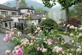 初夏の箱根♪ Vol.35 ☆箱根ガラスの森美術館:美しい初夏の風景♪