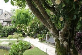 初夏の箱根♪ Vol.41 ☆箱根ガラスの森美術館:美しい初夏の風景♪