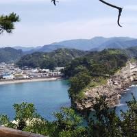 母を連れて 伊豆半島西海岸ドライブ下田から大瀬崎まで