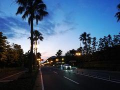 自転車に乗ってなんちゃって海外旅行~葛西、浦安編~