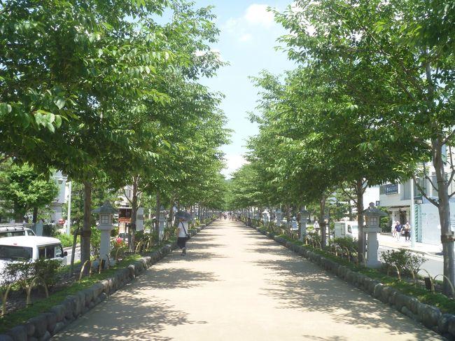 大船に泊まって、鶴岡八幡宮に行っただけです。<br />でも、久しぶりの外泊だったので、個人的には楽しめました。
