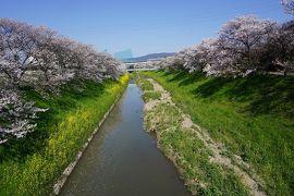 関西散歩記~2020 奈良・大和郡山市編~