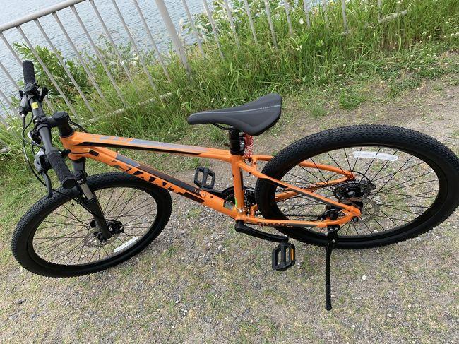 2020年 6月「伊坂ダムサイクルパーク」でマウンテンバイクデビュー(笑)~と車検ついでの「鰻木屋」のひつまぶしと「別小江神社」の御朱印♪