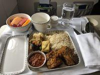 スラバヤステイ&スラバヤ空港プレミアムラウンジ&シンガポール航空SUB/SINビジネスクラス搭乗記