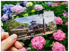 京都・旧三井家下鴨別邸(*^-^*)あじさいが見頃でした!