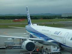 緊急事態宣言解除!初搭乗ANA A321NEO!千歳⇔羽田でレビュー&ホテルに泊まってマイル修行!(#^^#)♪