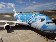 2019年5月気ままに過ごすハワイ12日間⑧帰国編【新設ANAラウンジ・A380ビジネスクラス】★2020年キャンセル★