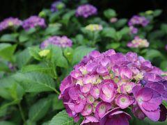 香川・初夏の香りを感じる旅