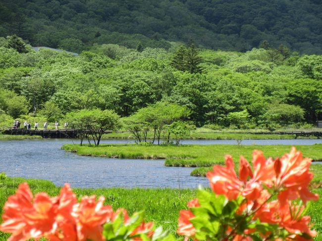 初夏の赤城山を お散歩♪