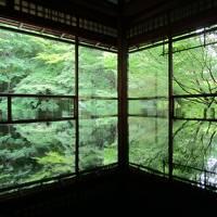 2020年6月青紅葉の京都1泊2日(前編)