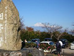 日本平で富士山を見る