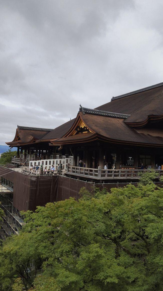 梅雨の京都、定例のお墓参りと大阪も楽しむ旅1