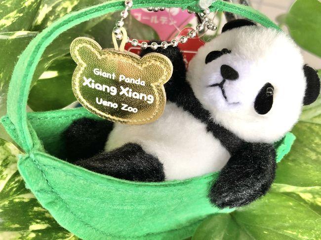 今日は6月23日火曜日です。<br />待ちに待った上野動物園の再開日です!<br /><br />早速、シャンシャンに会いに行って来まーす☆