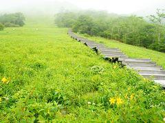 ニッコウキスゲの咲く高原散策と滝を見ながらティータイム