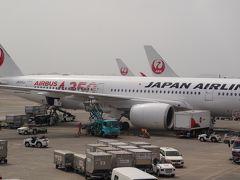 やっと解禁。4か月ぶりの搭乗、30年ぶりの沖縄へ。