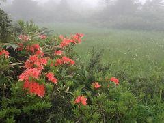 秋田の山旅1 鶴の湯から大白森へ