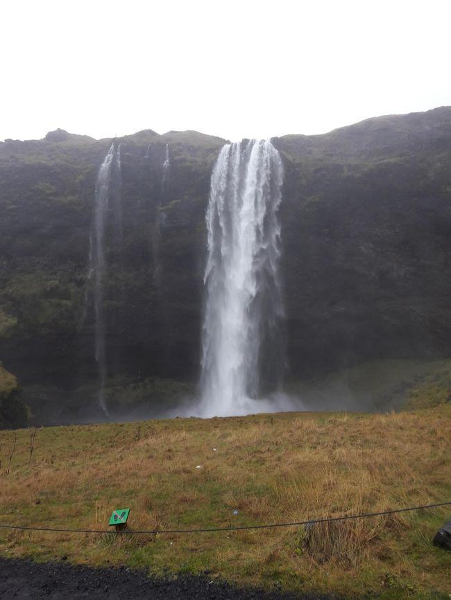 古い旅行写真放出シリーズ。<br /><br />2016年11月上旬、アイスランドで開催されているAir Wavesに合わせてアイスランドへ。<br />2日目はアイスランド南部を周遊する1日バスツアーに参加、アイスランドの大自然を楽しみました。本当はヨークルスアゥルロゥン氷河湖に行ってみたかったのですがツアー催行曜日が合わず断念。シルフラでのスノーケルにも惹かれましたが、メキシコのセノーテでのスノーケリングで怖い思いをしたのでこちらもパス(^_^;)。<br /><br />1日中あいにくのお天気だったので、写真が暗いものばかりなのが残念です。<br /><br />