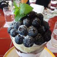 岩原果樹園サクランボ狩りとブルーベリーパフェを食べに山梨へ