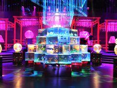 【リメイク2020】祭りの前の熱帯夜*.金魚も踊る.*日本橋「アートアクアリウム2015」☆*